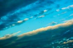 Molnhimmel- och fågelbakgrund Royaltyfria Foton