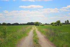 molnig fältvägsky Grönt gräs, buskar och moln på den blåa himlen Arkivbilder