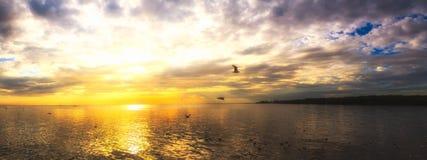 Molnig havssolnedgång för stillsam plats med seagulls som flyger på solnedgången Royaltyfri Foto