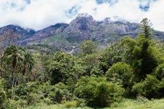 Molnig himmel över monteringen Mulanje med skogen arkivfoton