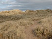 Molnig himmel över sanddyerna fotografering för bildbyråer