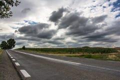 Molnig himmel och väg Royaltyfri Bild