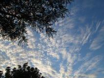 Molnig himmel 01 vid Kambas Arkivbild