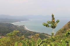 Molnig kust och de gröna träden Fotografering för Bildbyråer