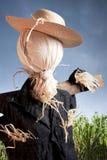 molnig scarecrow för havredagfält Arkivbild