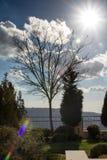 molnig skytree Royaltyfri Bild