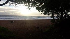 Molnig soluppgång på stranden arkivbild