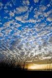 molnig strand arkivbild