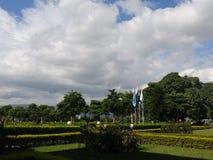 molnig trädgård Royaltyfria Bilder