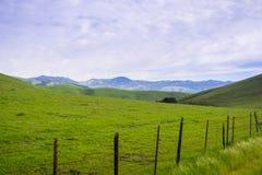 Molnig vårmorgon i kullarna av södra San Francisco Bay, San Jose, Kalifornien arkivfoton