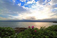 Molniga Dawn Coastline Royaltyfria Bilder