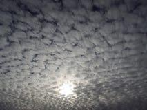 Molniga himlar per vintermorgon Royaltyfria Foton