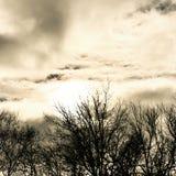 molnigt Royaltyfri Foto