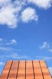 molnigt golvskyträ Arkivbild