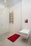 Molnigt hem - toalett och dusch fotografering för bildbyråer