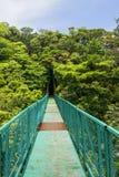 Molnskog, hängande bro, Monteverde, Costa Rica royaltyfria foton