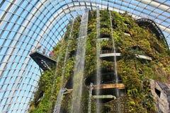 Molnskog - trädgårdar vid fjärden, Singapore Royaltyfria Bilder