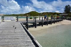 Molo dell'isola del pinguino Parco marino delle isole di Shoalwater Rockingham Australia occidentale Fotografie Stock