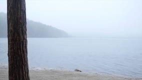 Molo przy jeziorem, lasowym jeziornym brzeg deszczem i śniegiem, Lustrzana powierzchnia jezioro las zakrywa z pierwszy Obrazy Royalty Free