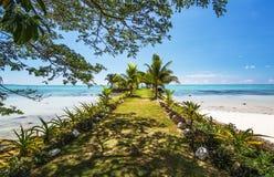 Molo samoano della spiaggia Fotografia Stock