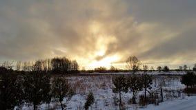 moloda halna słońca Ukraine widok zima Obrazy Stock