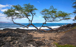 Molokini from Makena Royalty Free Stock Images