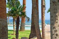Molos散步看法在利马索尔市海岸的在Cypr 免版税库存图片