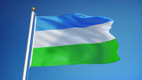 Molossia flag in slow motion seamlessly looped with alpha stock video