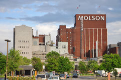 Molson Coors Brewing Company, Montreal Royalty Free Stock Images