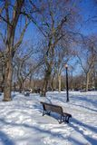 Molson Park, a quiet winter spot royalty free stock photo