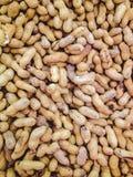 Molta arachide per fondo Immagini Stock Libere da Diritti