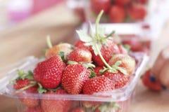 Molta frutta fresca della fragola Fotografie Stock Libere da Diritti
