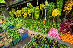 Molta frutta tropicale nel servizio esterno immagini stock