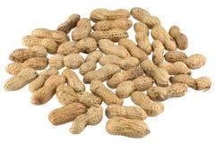Molte arachidi Immagine Stock