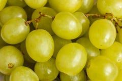 Molte bacche dell'uva bianca Fotografia Stock