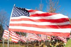 Molte bandiere americane Fotografie Stock