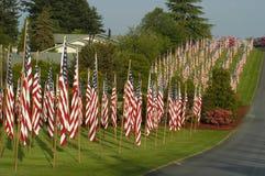 Molte bandierine degli Stati Uniti disposte in prato inglese fotografia stock