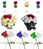 Molte belle rose senza fondo, rose dei fiori isolate in grandi numeri Fotografia Stock Libera da Diritti