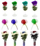 Molte belle rose senza fondo, rose dei fiori isolate in grandi numeri Fotografie Stock