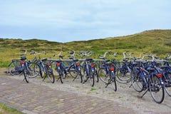 Molte biciclette locative identiche che parcheggiano davanti alla riserva naturale integrale fotografie stock libere da diritti