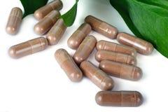 Molte capsule di colore marrone su bianco Immagini Stock