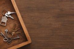 Molte chiavi differenti sul vassoio di legno Fotografie Stock Libere da Diritti