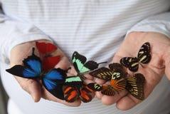 Molte farfalle sulle mani dell'uomo Immagine Stock