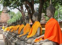 Molte immagini del buddha Fotografie Stock