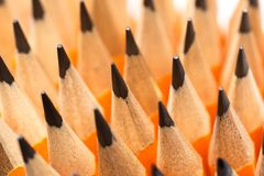 Molte matite di legno fotografia stock