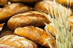 Molte pagnotte fresche rustiche marroni del pane di segale Immagine Stock