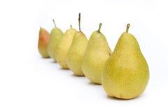 Molte pere gialle nella riga Fotografie Stock