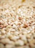 Molte piccole pietre del mare fotografia stock libera da diritti