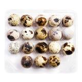 Molte piccole uova di quaglia in una scatola di plastica, isolata su backgr bianco Fotografie Stock Libere da Diritti