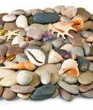 Molte pietre e conchiglie immagini stock libere da diritti
